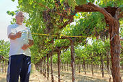 USDA Brings Space Tech and Water Needs to California Vineyards