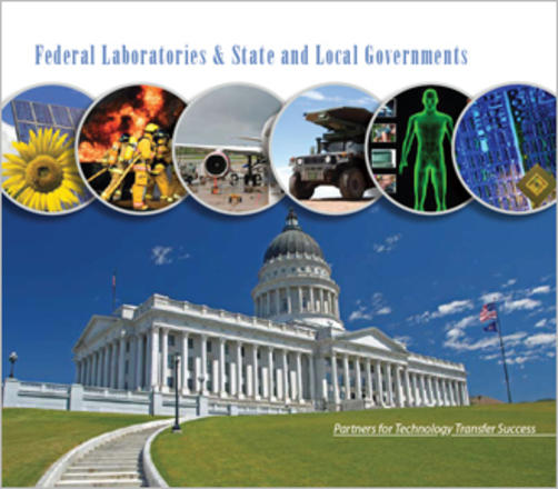 2008 FLC State and Local Government Publication
